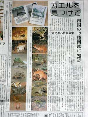 高知新聞の記事_カエルを見つけて