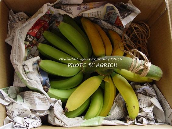 banana2014-6-1