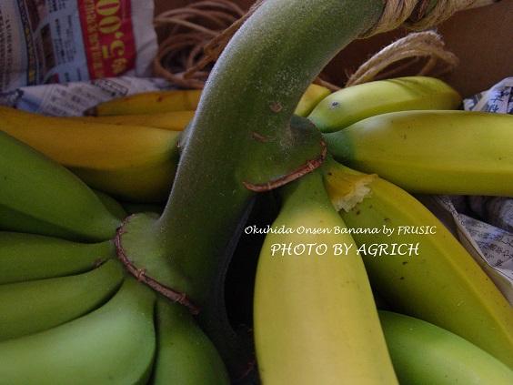 banana2014-6-2