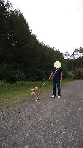 朝散歩 2