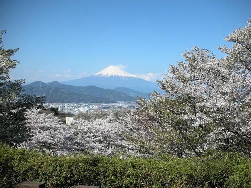日本平頂上より