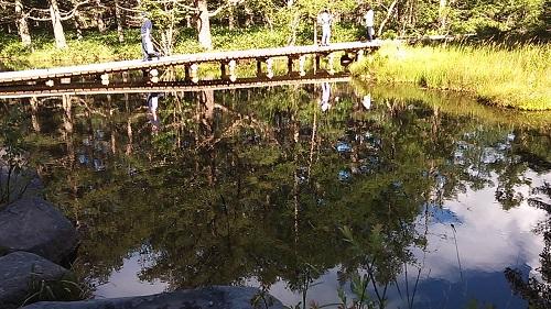 池に映る景色