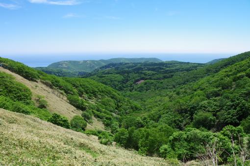 沼見峠から海側の眺め