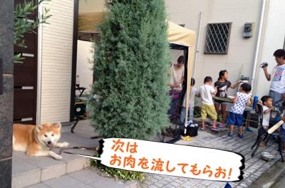 b_20140731_4.jpg