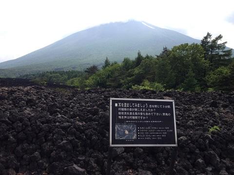 23溶岩流2