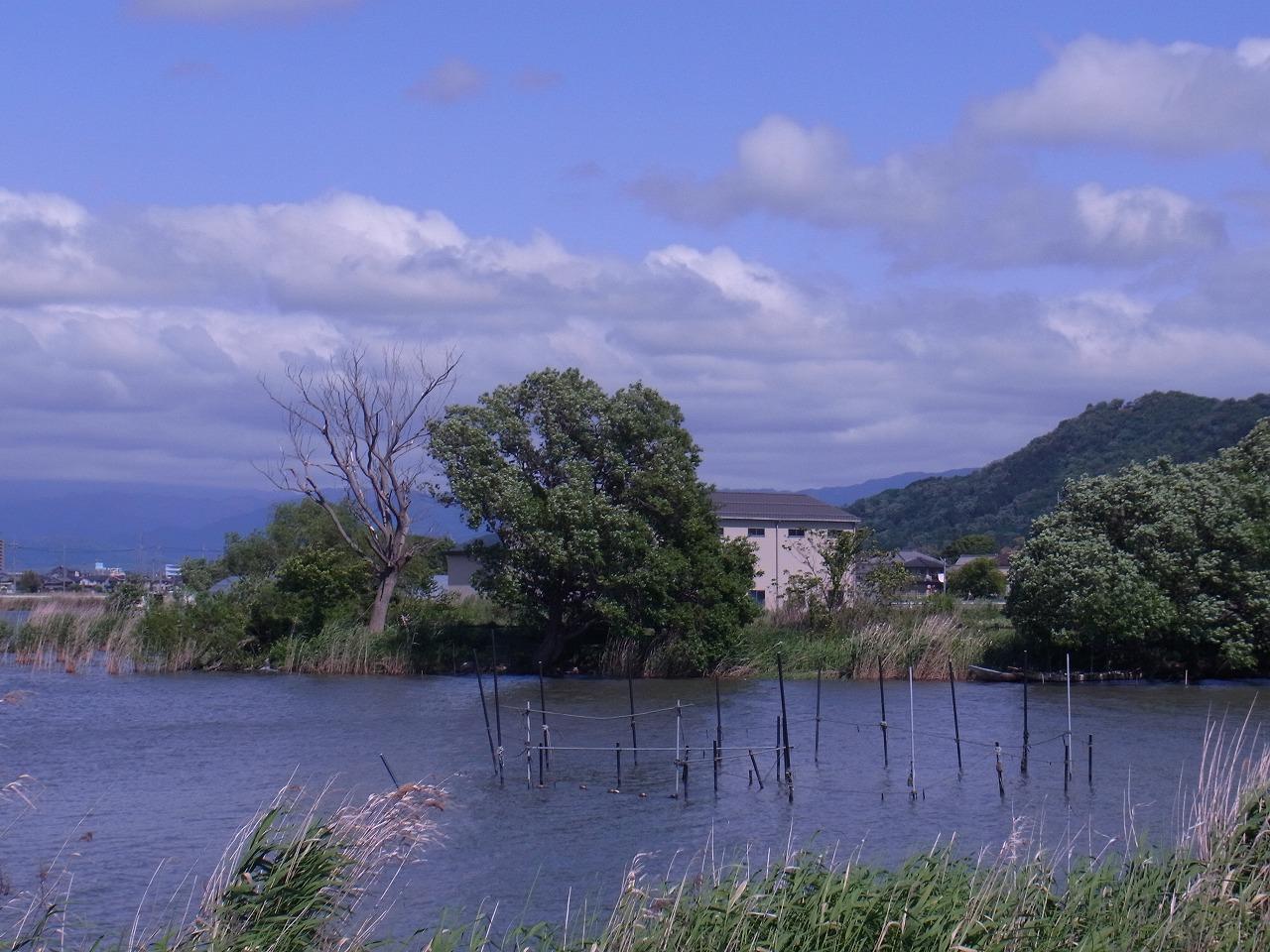 能登川 内湖