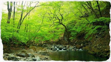 2014 那珂川水系1 (3)