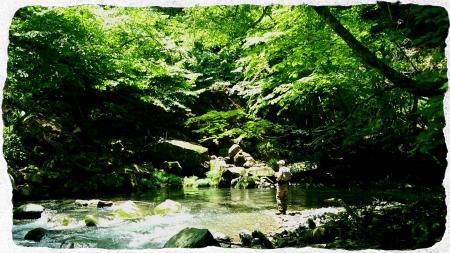 2014 那珂川水系4 (6)