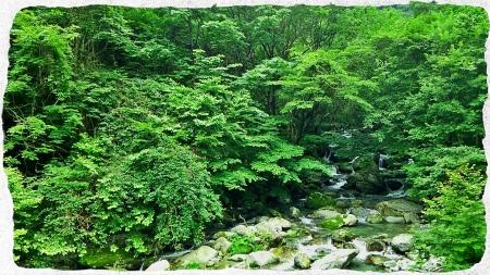 2014 那珂川水系5 (3)
