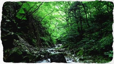 2014 那珂川水系8 (5)