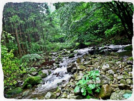 2014 鬼怒川水系4 (1)