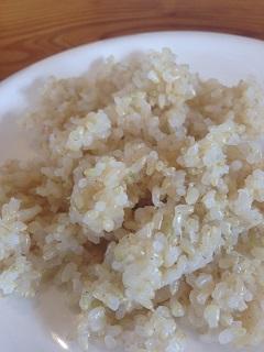 カフェレストラン コア デザイン 玄米