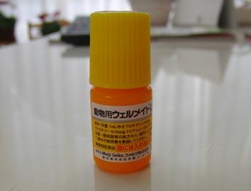 CIMG0200.jpg