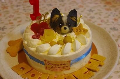 大吉1歳ケーキ