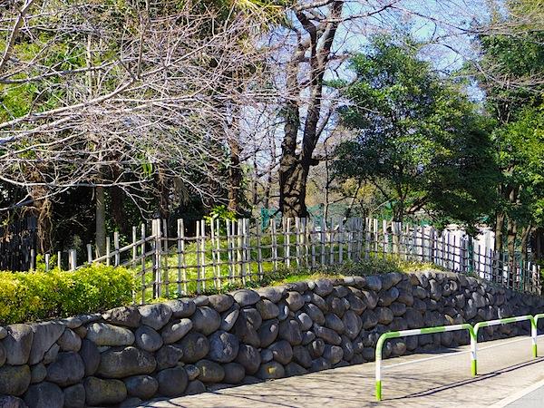 「飛鳥山公園内の古墳かもしれない塚 その2」