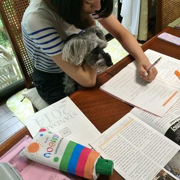 勉強ちう2