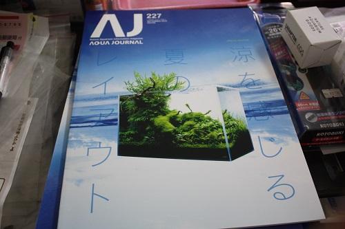 アクアジャーナル最新号 東海 岐阜 熱帯魚 水草 観葉植物販売 Grow aquarium