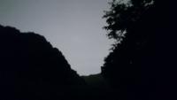 [夜歩] 蛍