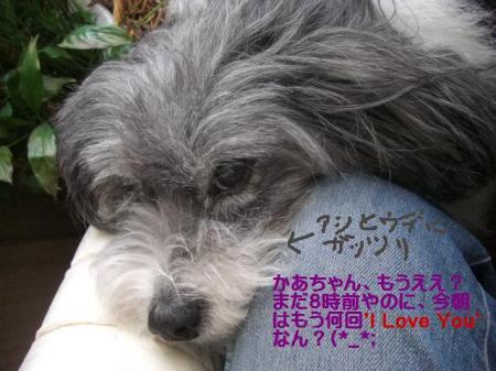 love+you!_convert_20140427092358.jpg