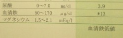 ★250血清鉄