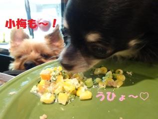 9-6 ミニー食べる