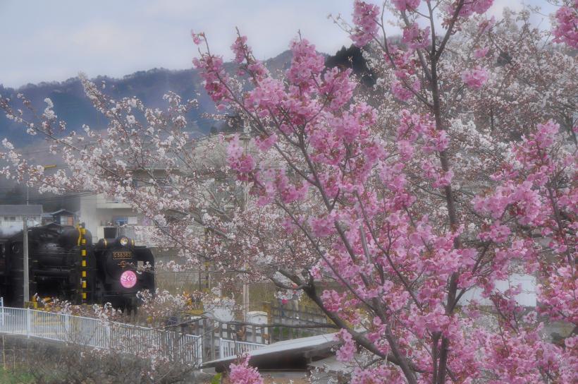 2014-04-07+001_ch.jpg