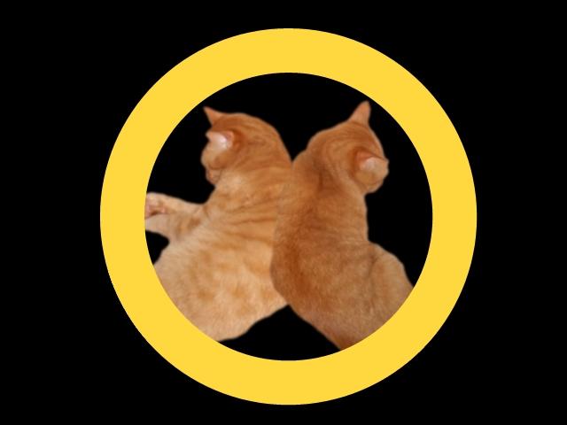 背向かい猫紋
