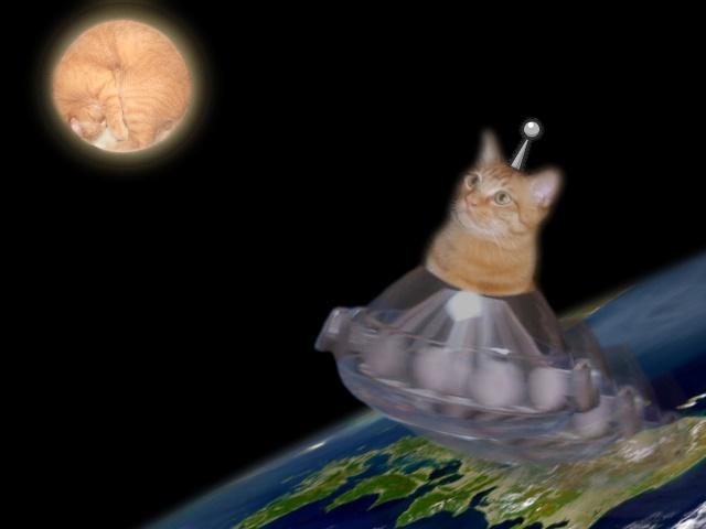 お迎え八朔UFO