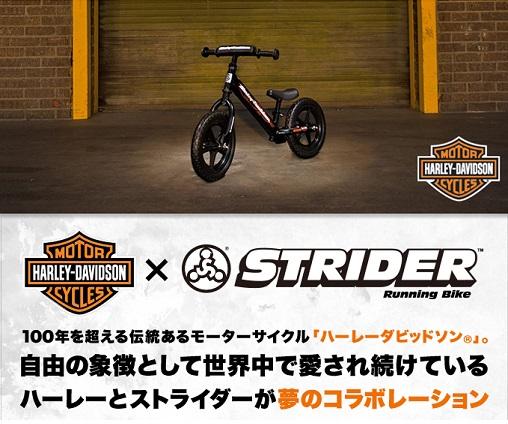 ストライダー1