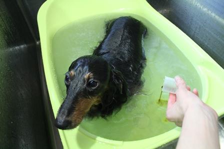 7熊笹温浴