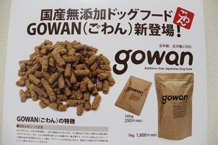 gowan1.jpg