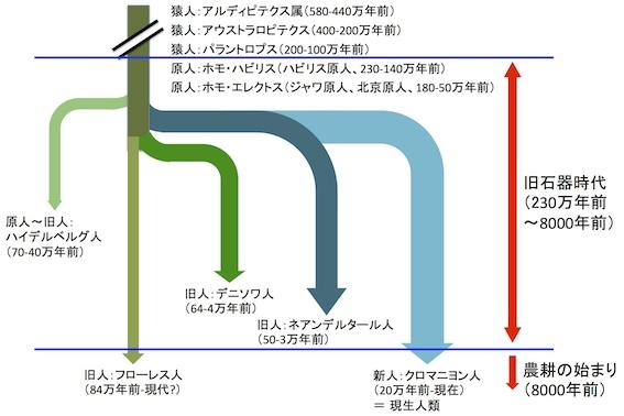 人類の起源と農耕の始まり図2