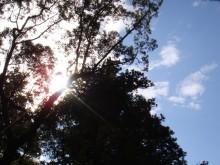 日日色色-DSC00002s