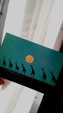 日日色色*カラーセラピストYukimiの日記。-2010072717540000