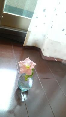 日日色色*カラーセラピストYukimiの日記。-2010082011100000.jpg