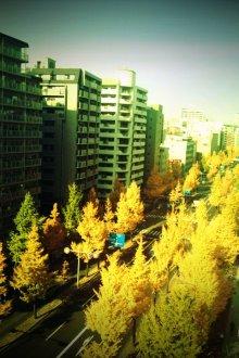 日日色色*カラーセラピストYukimiの日記。-FxCam_1291263304574