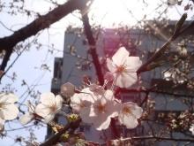 日日色色*カラーセラピストYukimiの日記。-7