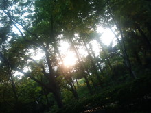 日日色色*センセーションカラーセラピストYukimiの色日記。-2011-06-13 17.54.49