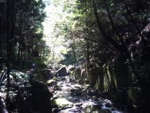 日日色色*カラーセラピストYukimiの色日記。-2011-08-26 12.50.58