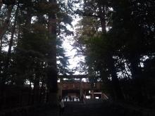 日日色色*カラーセラピストYukimiの色日記。-2012-02-07 15.36.21