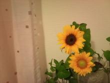 *日日色色*カラーセラピストYukimiの色模様。-2012-08-20 18.33.12