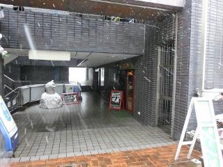 雪7 (320x240)