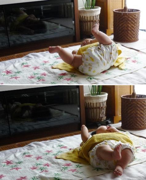a手足の運動P1310428