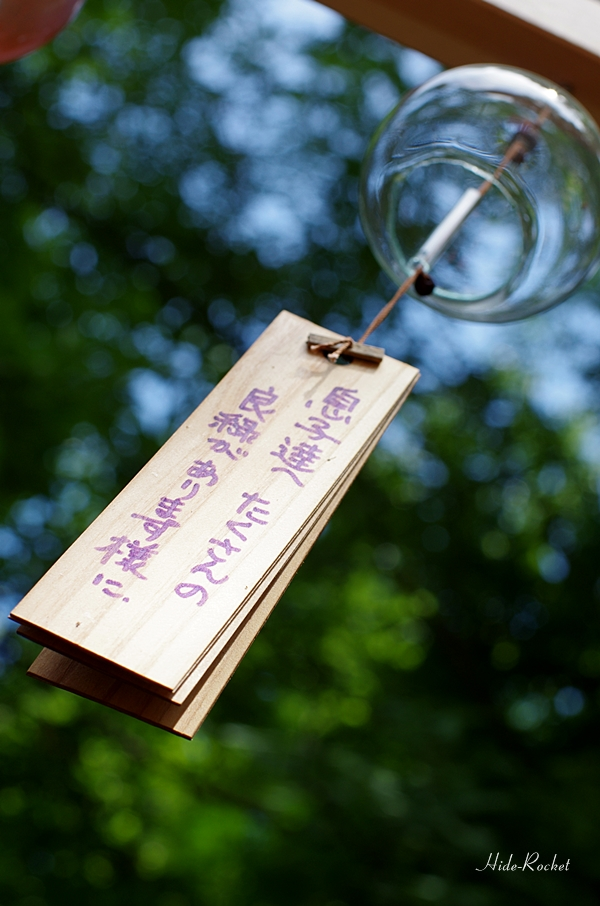 2014_hikawa_03.jpg