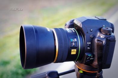 55mm_F14_12.jpg