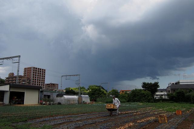 雷鳴002