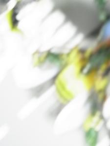 TF4 AD-EX イオン限定 ホイルジャック8389