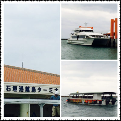 2014.3.26西表島5