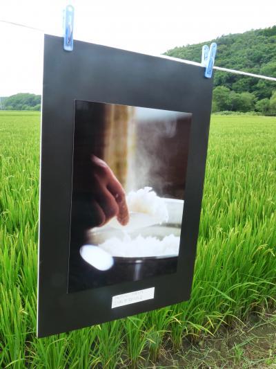 2014.8.22田んぼde写真展1