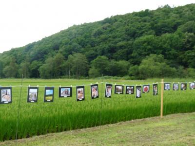 2014.8.22田んぼde写真展